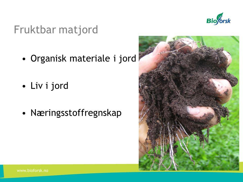 Fruktbar matjord •Organisk materiale i jord •Liv i jord •Næringsstoffregnskap