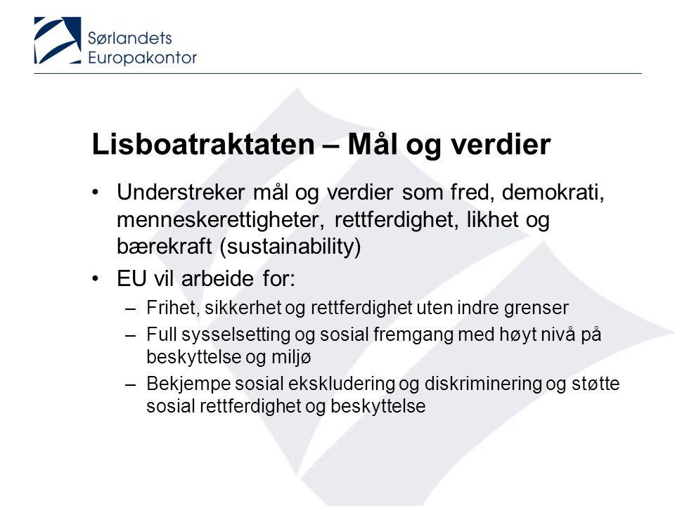 Politikkområder (Clusters) •Modernisering av høyere utdanning •Lærere og lærerutdanning •Ressursutnyttelse •Matematikk, naturvitenskap og teknologi •Tilgang og sosial integrering •Nøkkelkunnskaper •IKT •Læringsutbytte Erfaringsutveksling – Norsk deltakelse •Førskole •Early intervention