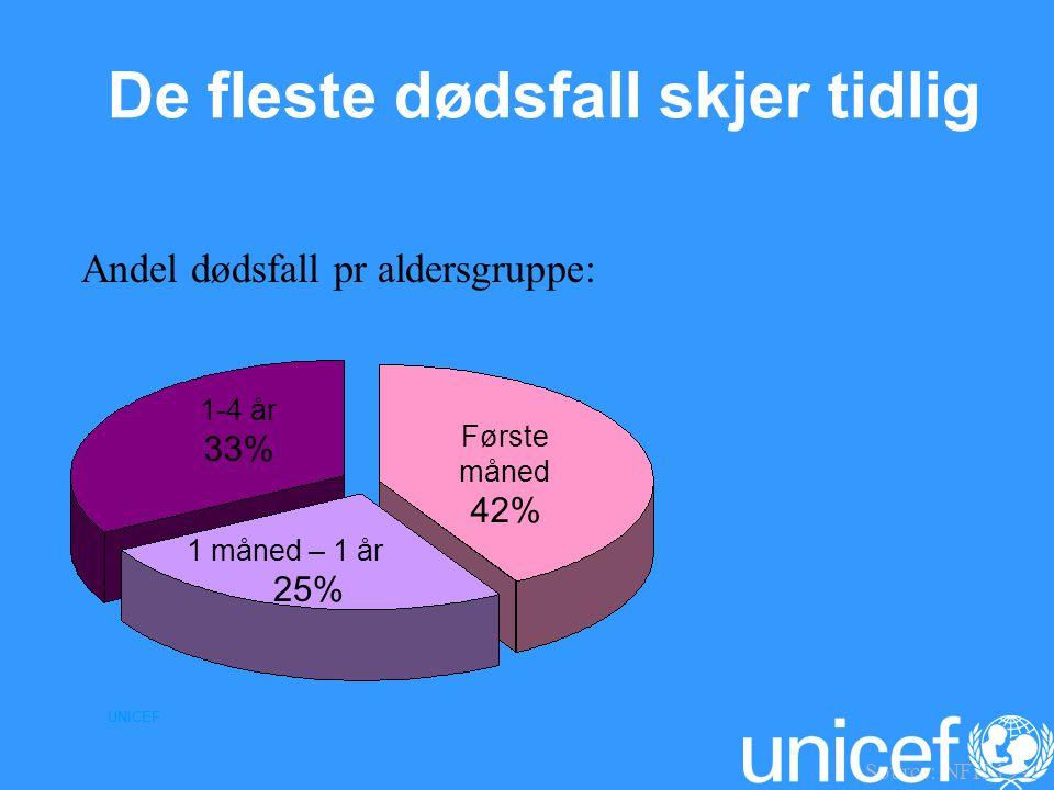 UNICEF Andel dødsfall pr aldersgruppe: Første måned 42% 1-4 år 33% 1 måned – 1 år 25% Source: NFH 1996 De fleste dødsfall skjer tidlig