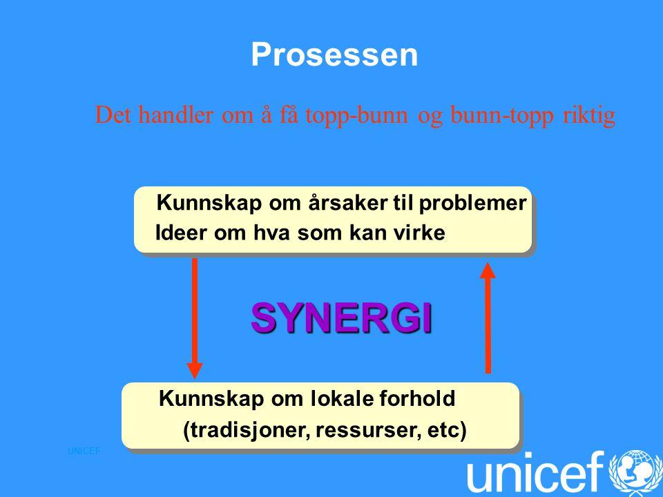 UNICEF Prosessen SYNERGI SYNERGI (tradisjoner, ressurser, etc) Kunnskap om lokale forhold Kunnskap om årsaker til problemer Ideer om hva som kan virke Det handler om å få topp-bunn og bunn-topp riktig