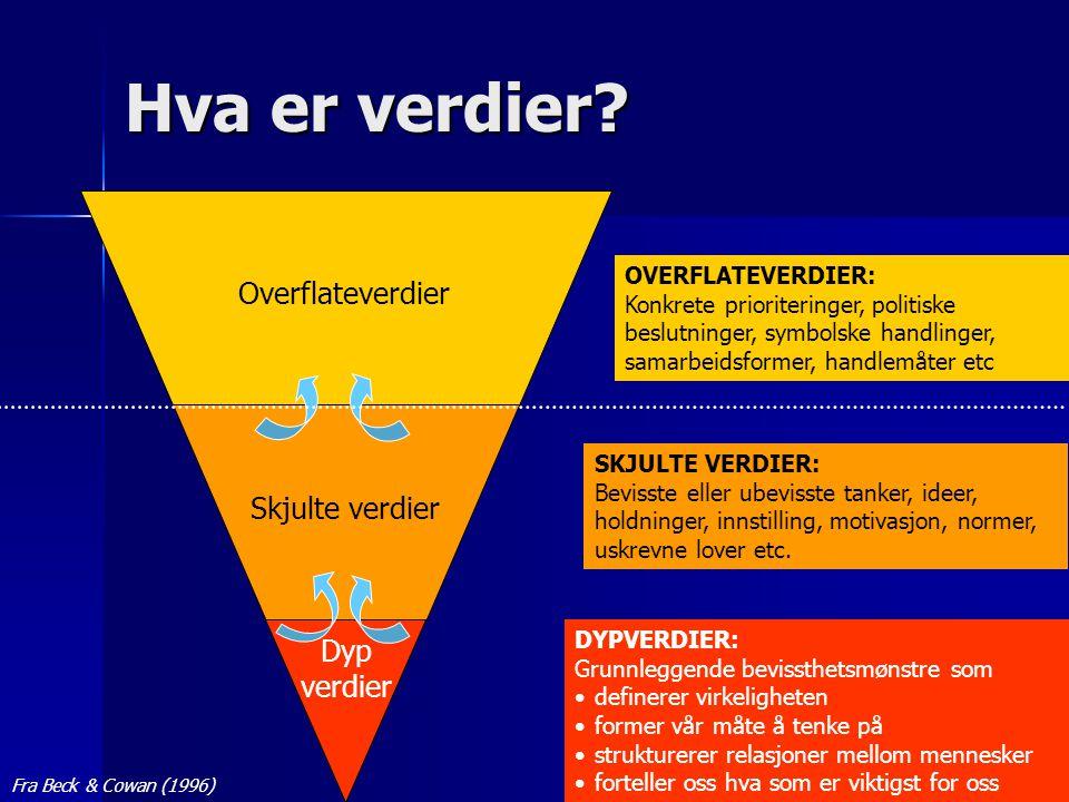 © Odd Inge Forsberg Hva er verdier? Overflateverdier Skjulte verdier Dyp verdier DYPVERDIER: Grunnleggende bevissthetsmønstre som •definerer virkeligh