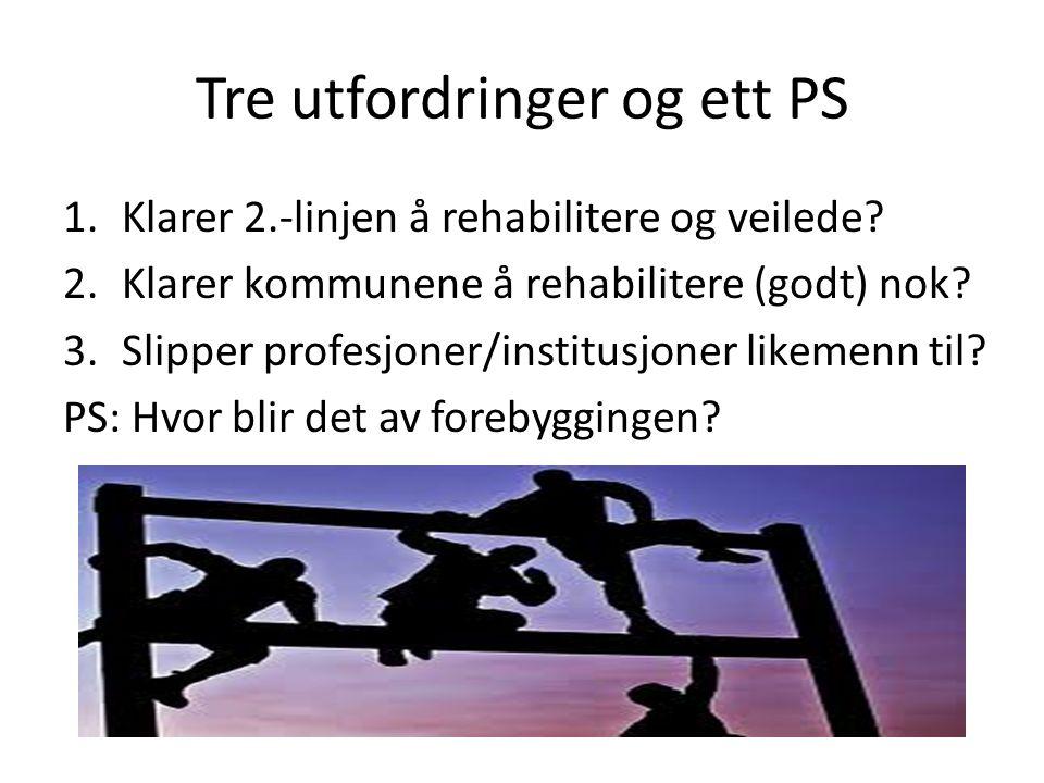Tre utfordringer og ett PS 1.Klarer 2.-linjen å rehabilitere og veilede? 2.Klarer kommunene å rehabilitere (godt) nok? 3.Slipper profesjoner/institusj