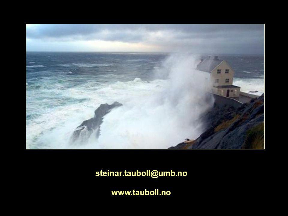 steinar.tauboll@umb.no www.tauboll.no