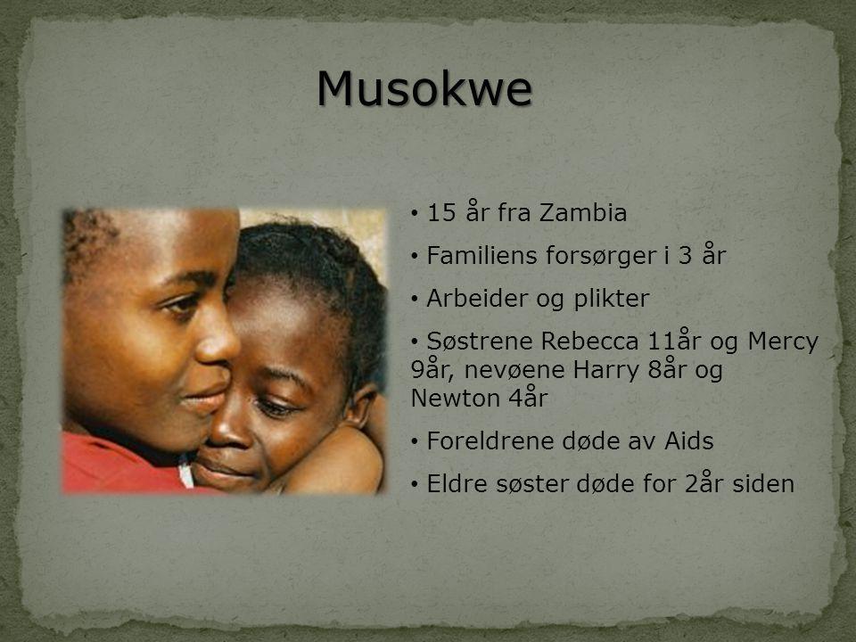 Musokwe • 15 år fra Zambia • Familiens forsørger i 3 år • Arbeider og plikter • Søstrene Rebecca 11år og Mercy 9år, nevøene Harry 8år og Newton 4år •
