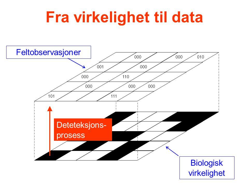 101 000 001 000 111 000 010 000 110 000 Biologisk virkelighet Feltobservasjoner Deteteksjons- prosess Fra virkelighet til data