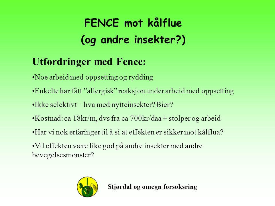 """FENCE mot kålflue (og andre insekter?) Stjørdal og omegn forsøksring Utfordringer med Fence: •Noe arbeid med oppsetting og rydding •Enkelte har fått """""""