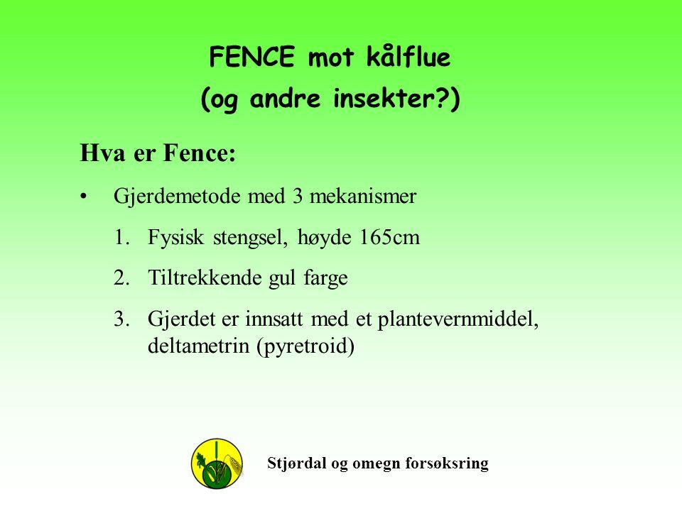 FENCE mot kålflue (og andre insekter?) Stjørdal og omegn forsøksring Hva er Fence: •Gjerdemetode med 3 mekanismer 1.Fysisk stengsel, høyde 165cm 2.Til