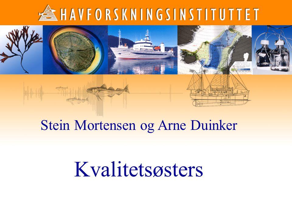 1 1 Stein Mortensen og Arne Duinker Kvalitetsøsters