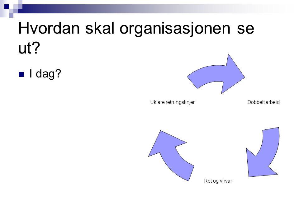 Hvordan skal organisasjonen se ut?  I dag? Dobbelt arbeid Rot og virvar Uklare retningslinjer