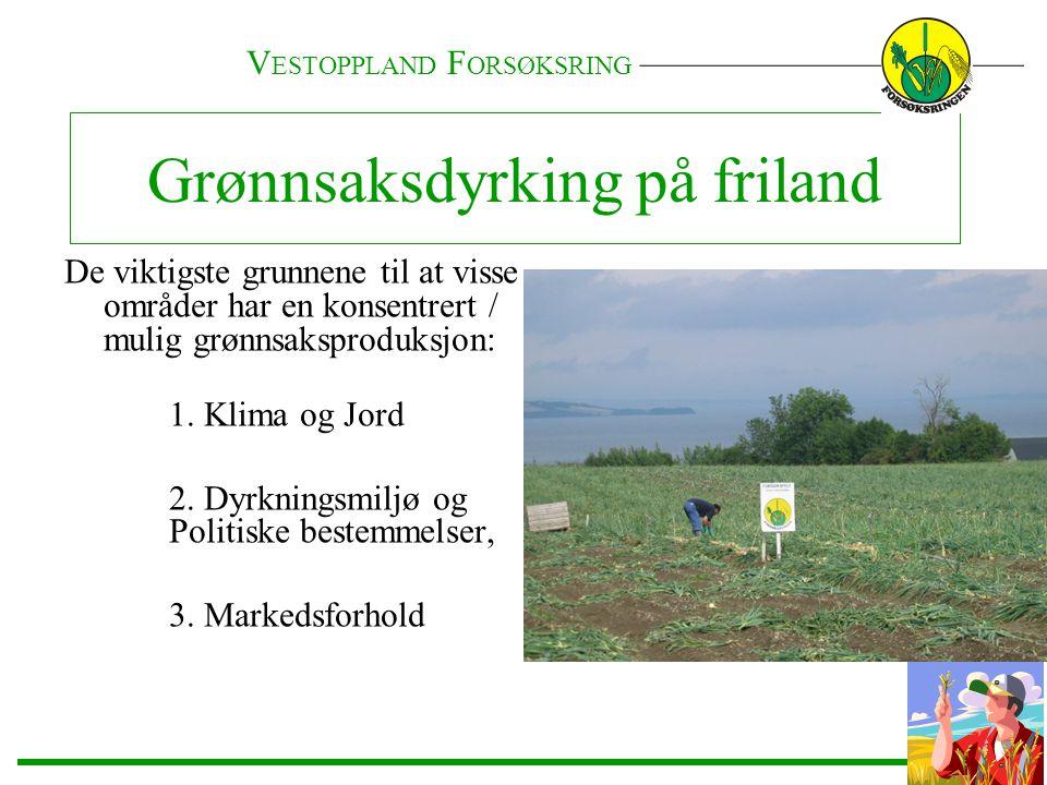 De viktigste grunnene til at visse områder har en konsentrert / mulig grønnsaksproduksjon: 1. Klima og Jord 2. Dyrkningsmiljø og Politiske bestemmelse