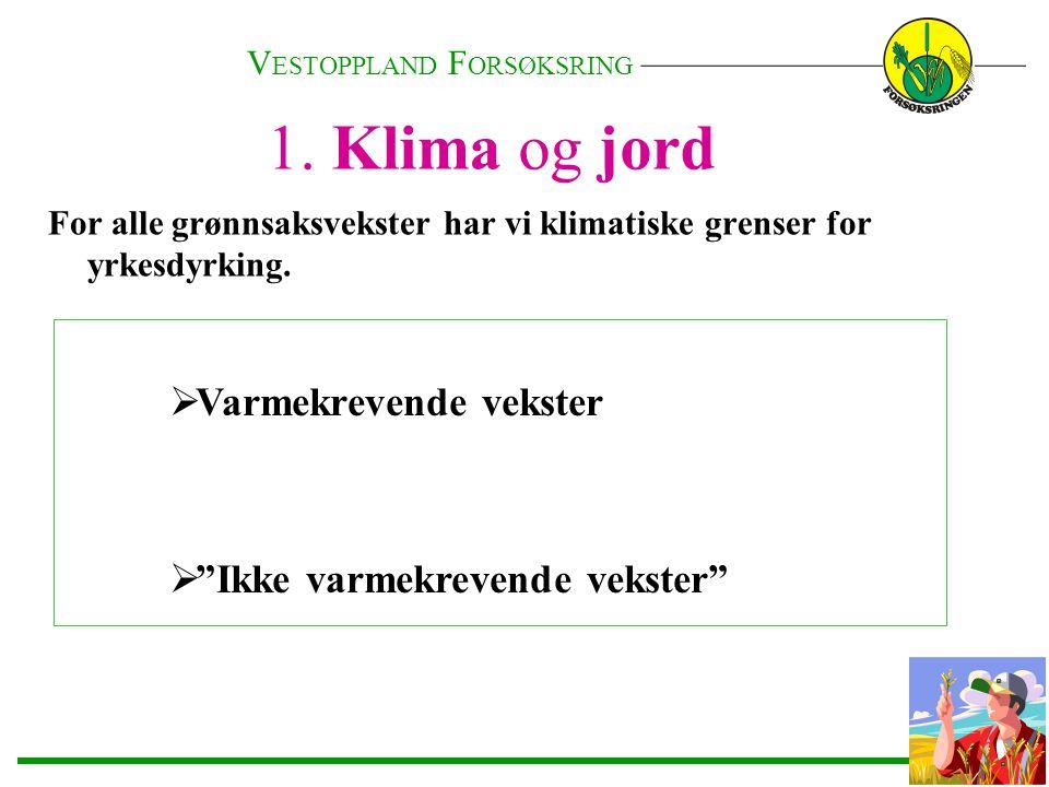 Norske klima har sine begrensinger når det gjelder grønnsaksdyrking Eks.