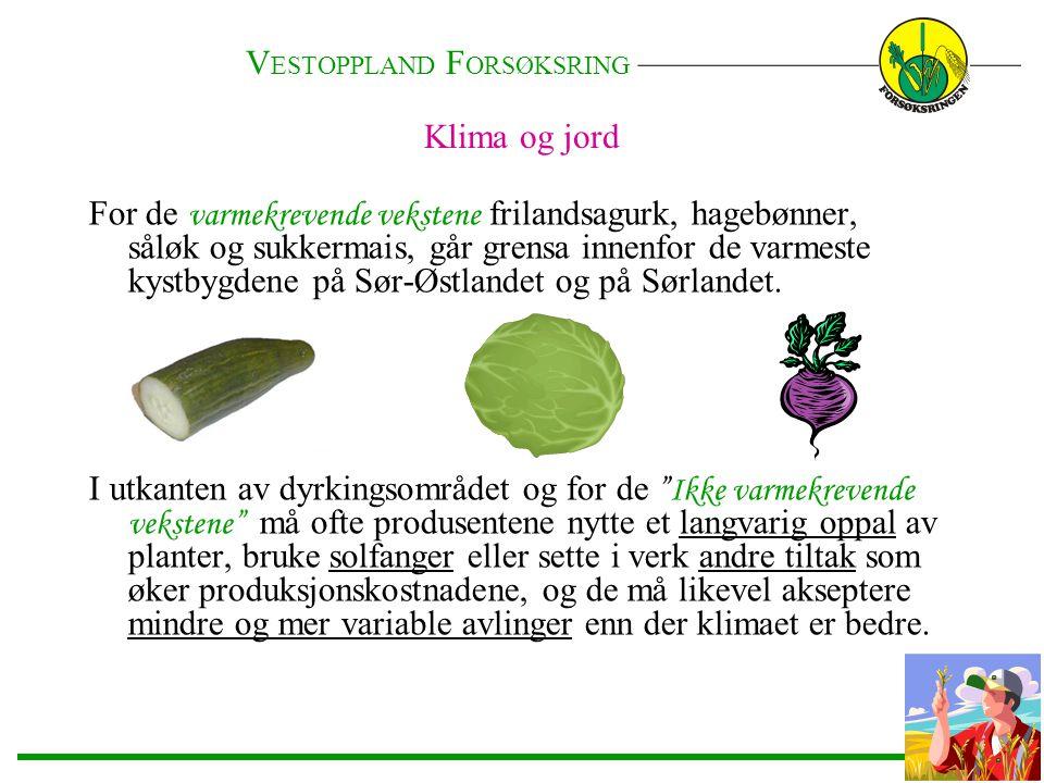 Klima og jord For de varmekrevende vekstene frilandsagurk, hagebønner, såløk og sukkermais, går grensa innenfor de varmeste kystbygdene på Sør-Østland