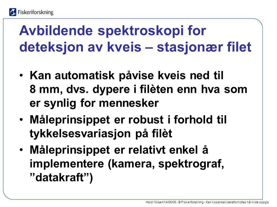 Heidi Nilsen/14/06/05 - © Fiskeriforskning - Kan kopieres/videreformidles når kilde oppgis Avbildende spektroskopi for deteksjon av kveis – stasjonær