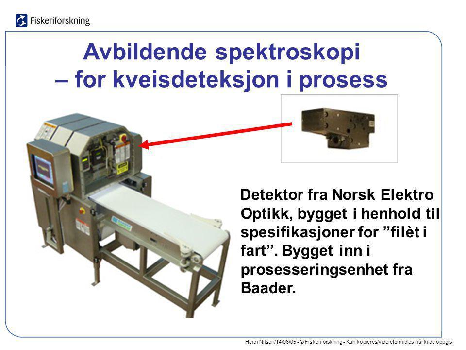 Heidi Nilsen/14/06/05 - © Fiskeriforskning - Kan kopieres/videreformidles når kilde oppgis Avbildende spektroskopi – for kveisdeteksjon i prosess Dete