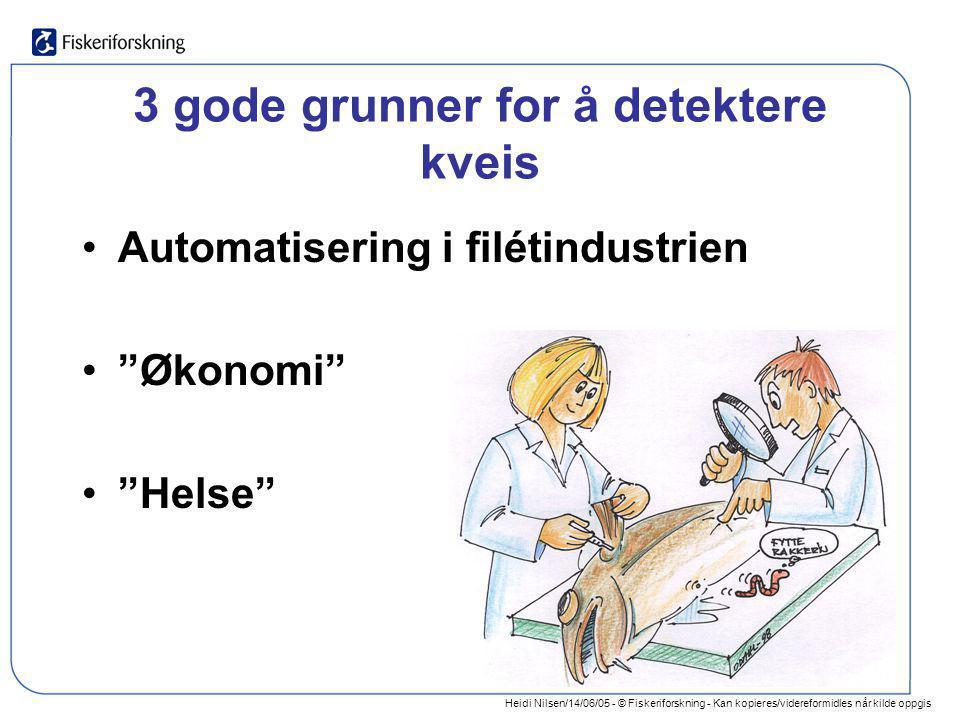 Heidi Nilsen/14/06/05 - © Fiskeriforskning - Kan kopieres/videreformidles når kilde oppgis 3 gode grunner for å detektere kveis •Automatisering i filé