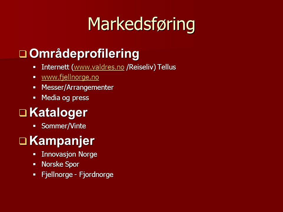 Markedsføring  Områdeprofilering  Internett (www.valdres.no /Reiseliv) Tellus www.valdres.no  www.fjellnorge.no www.fjellnorge.no  Messer/Arrangem