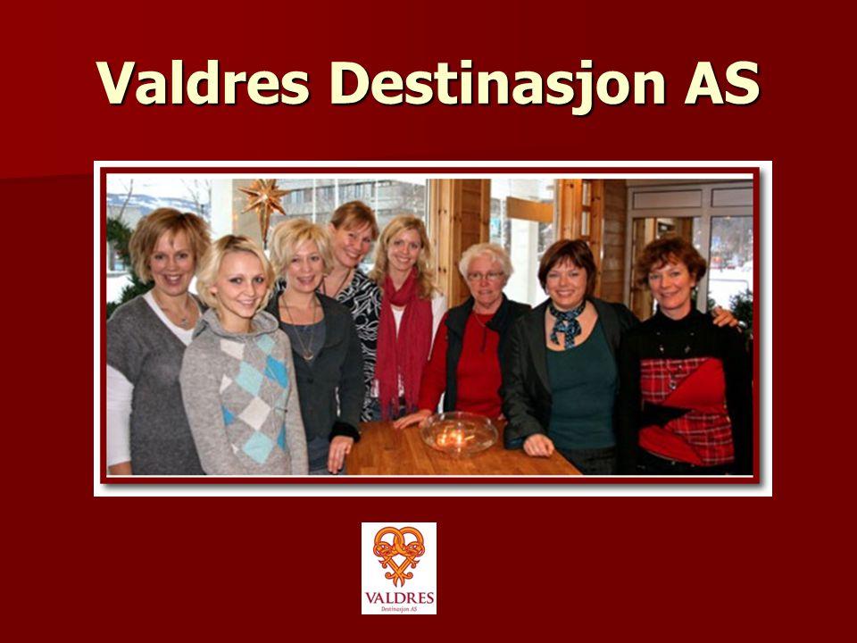 Visjon  Valdres Destinasjon skal være et verktøy for at Valdres blir den ledende helårs- destinasjonen i Norge  Visjonen er grunnmuren i alt vi gjør!