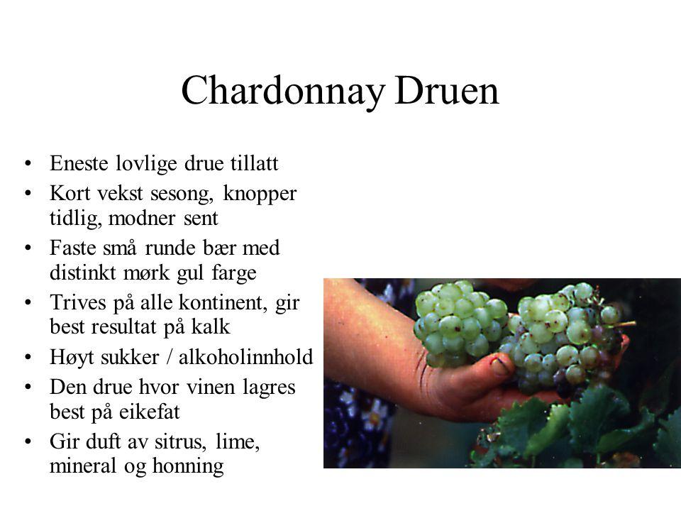 Chardonnay Druen •Eneste lovlige drue tillatt •Kort vekst sesong, knopper tidlig, modner sent •Faste små runde bær med distinkt mørk gul farge •Trives