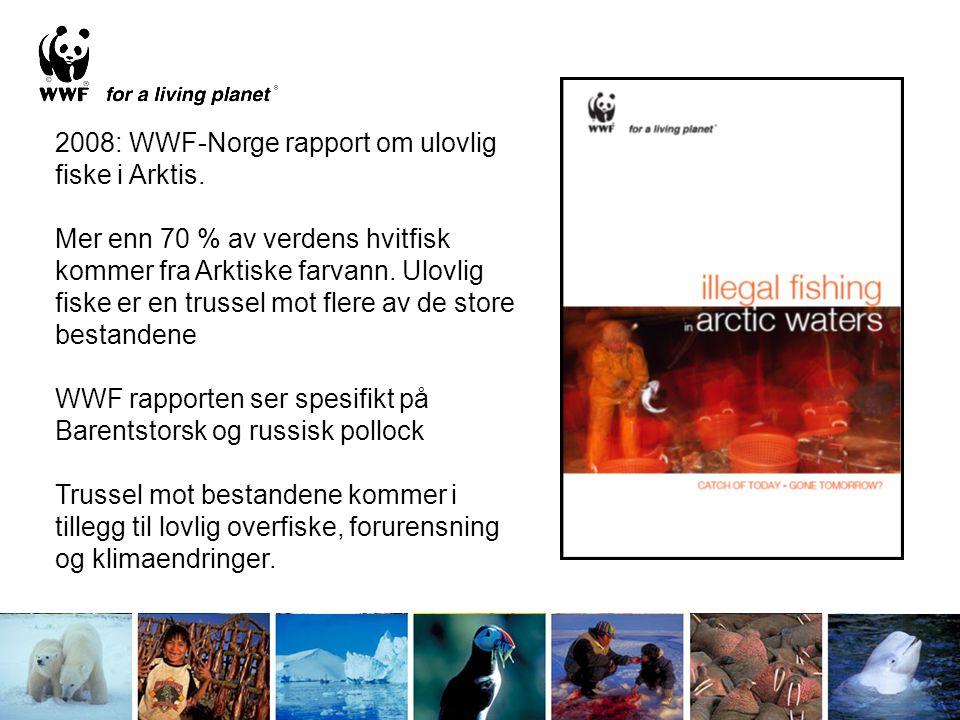 2008: WWF-Norge rapport om ulovlig fiske i Arktis. Mer enn 70 % av verdens hvitfisk kommer fra Arktiske farvann. Ulovlig fiske er en trussel mot flere
