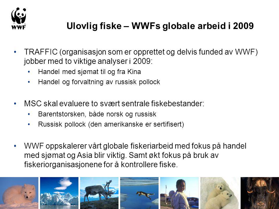 •TRAFFIC (organisasjon som er opprettet og delvis funded av WWF) jobber med to viktige analyser i 2009: •Handel med sjømat til og fra Kina •Handel og
