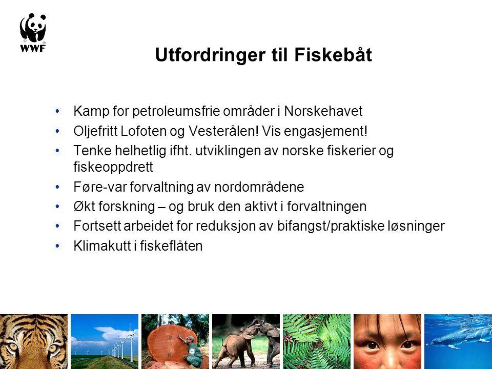 Utfordringer til Fiskebåt •Kamp for petroleumsfrie områder i Norskehavet •Oljefritt Lofoten og Vesterålen! Vis engasjement! •Tenke helhetlig ifht. utv