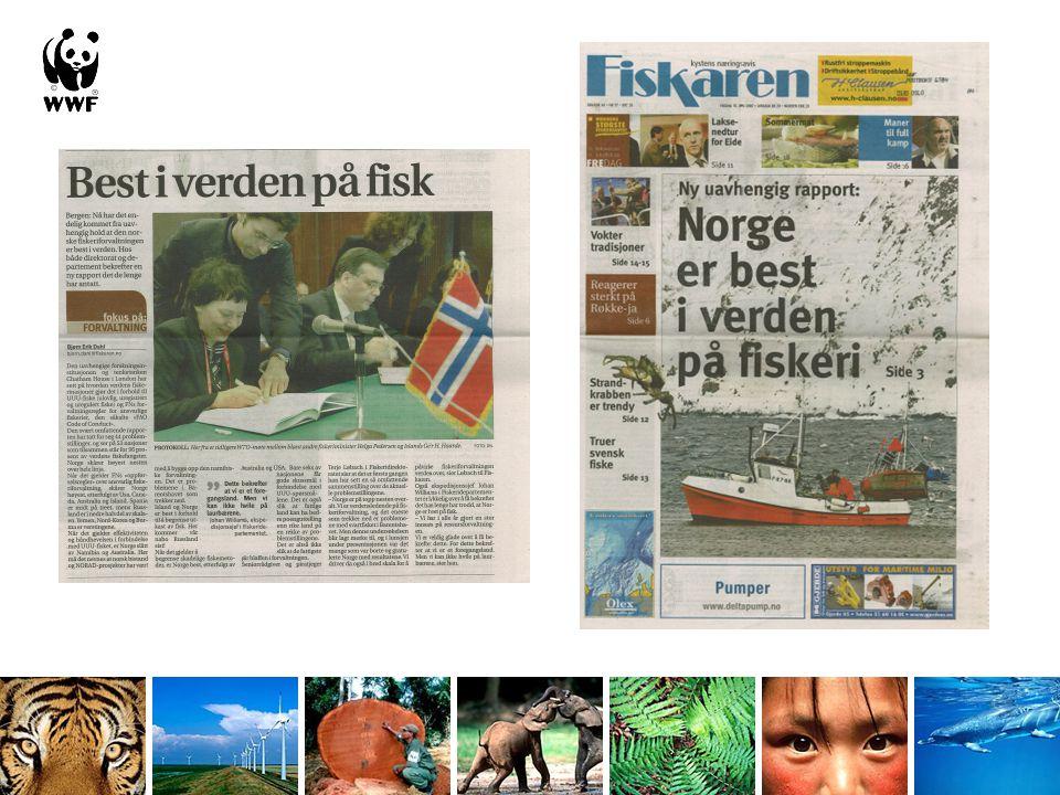 Denne rapporten er bestilt og betalt av WWF Norge fortjener å vinne - men konkurransen er dessverre ikke så hard.