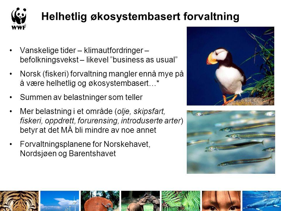 "Helhetlig økosystembasert forvaltning •Vanskelige tider – klimautfordringer – befolkningsvekst – likevel ""business as usual"" •Norsk (fiskeri) forvaltn"