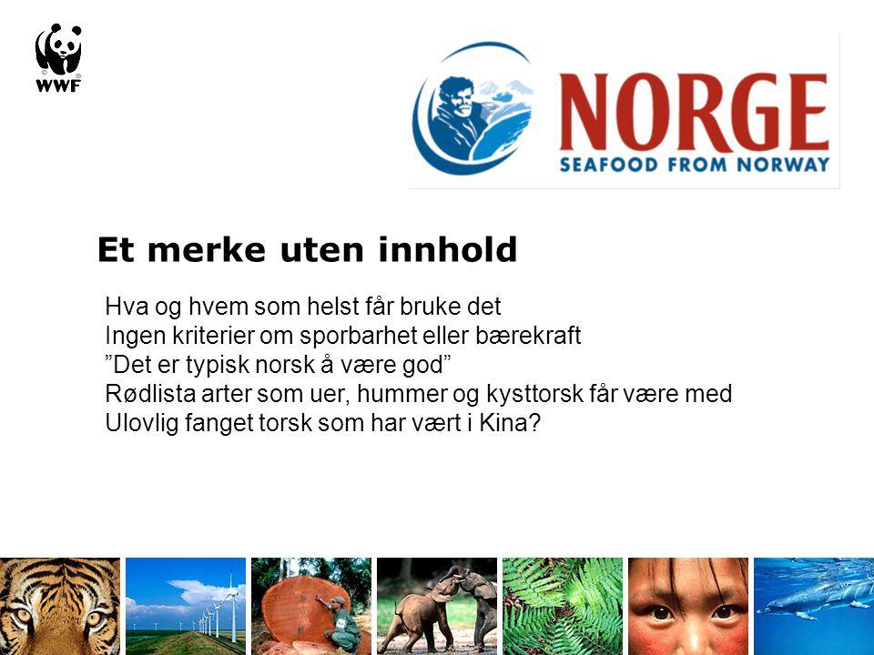 """Hva og hvem som helst får bruke det Ingen kriterier om sporbarhet eller bærekraft """"Det er typisk norsk å være god"""" Rødlista arter som uer, hummer og k"""