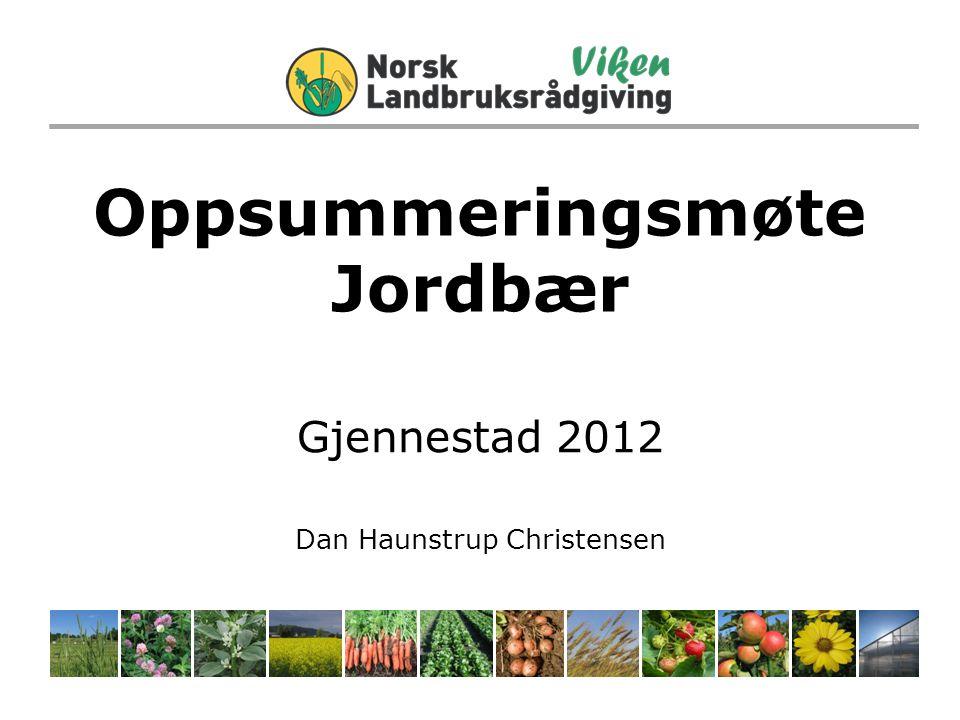Oppsummeringsmøte Jordbær Gjennestad 2012 Dan Haunstrup Christensen