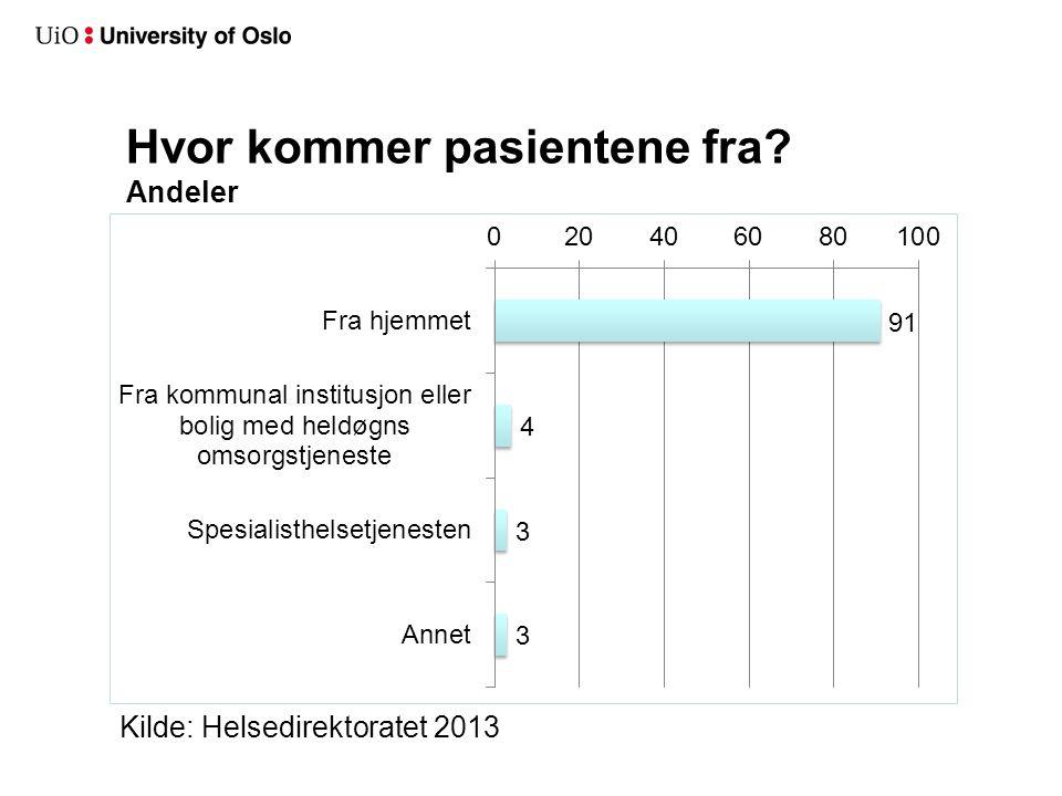 Hvor kommer pasientene fra? Andeler Kilde: Helsedirektoratet 2013