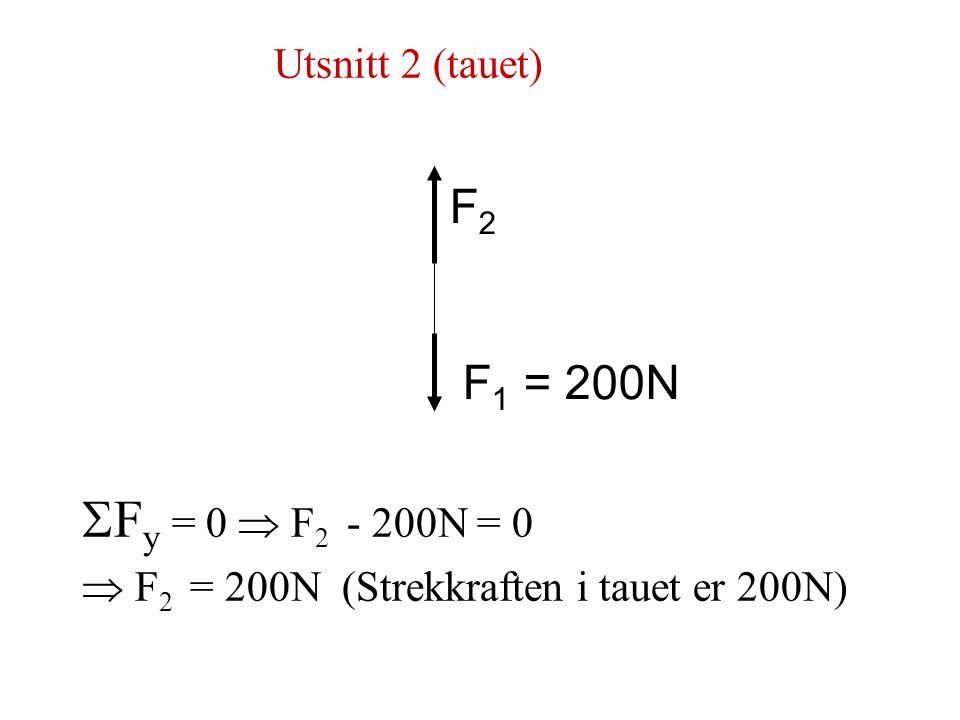 Utsnitt 2 (tauet)   F y = 0  F 2 - 200N = 0  F 2 = 200N (Strekkraften i tauet er 200N) F 1 = 200N F2F2