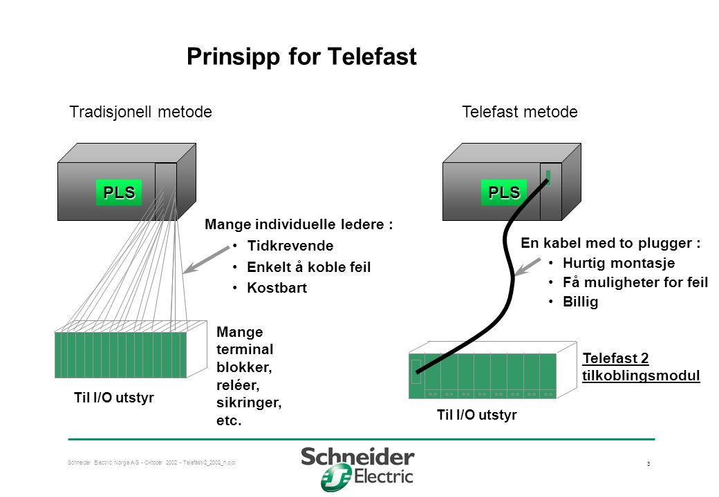 Schneider Electric Norge A/S - Oktober 2002 - Telefast-2_2002_n.ppt 3 Prinsipp for Telefast Mange individuelle ledere : •Tidkrevende •Enkelt å koble f