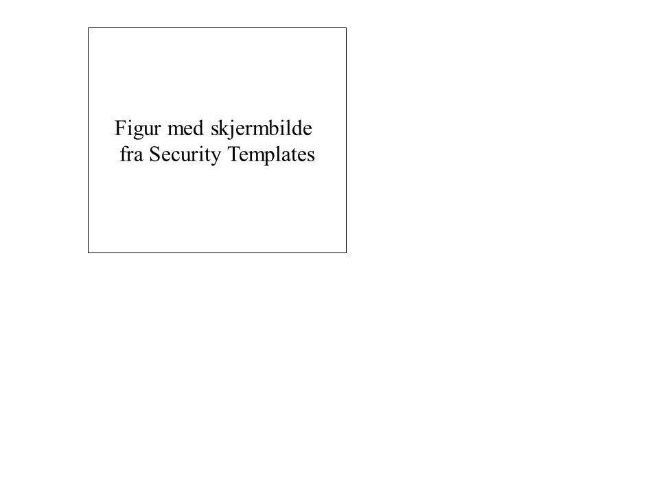 Figur med skjermbilde fra Security Templates