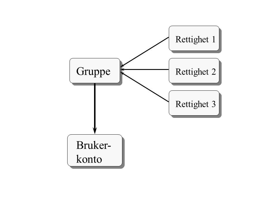 Gruppe Bruker- konto Rettighet 1 Rettighet 2 Rettighet 3