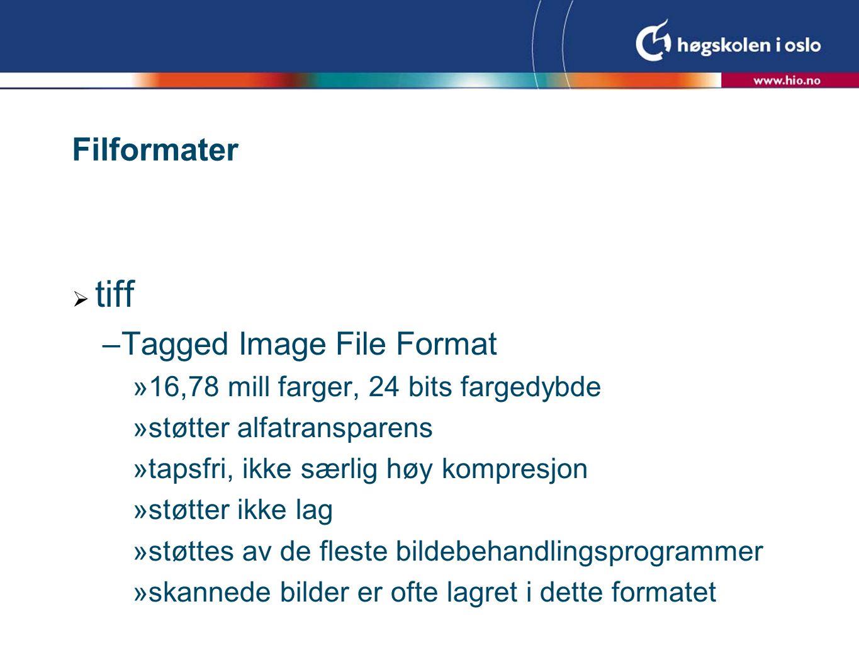 Filformater  tiff –Tagged Image File Format  16,78 mill farger, 24 bits fargedybde  støtter alfatransparens  tapsfri, ikke særlig høy kompresjon  støtter ikke lag  støttes av de fleste bildebehandlingsprogrammer  skannede bilder er ofte lagret i dette formatet