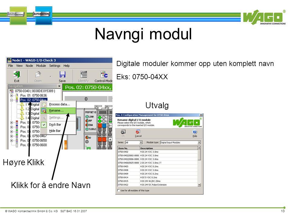 © WAGO Kontakttechnik GmbH & Co. KG S&T BAC 16.01.2007 13 Utvalg Navngi modul Høyre Klikk Digitale moduler kommer opp uten komplett navn Eks: 0750-04X