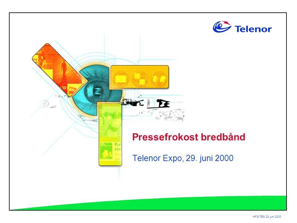 HFS/TBS 23.juni 2000 Pressefrokost bredbånd Telenor Expo, 29. juni 2000