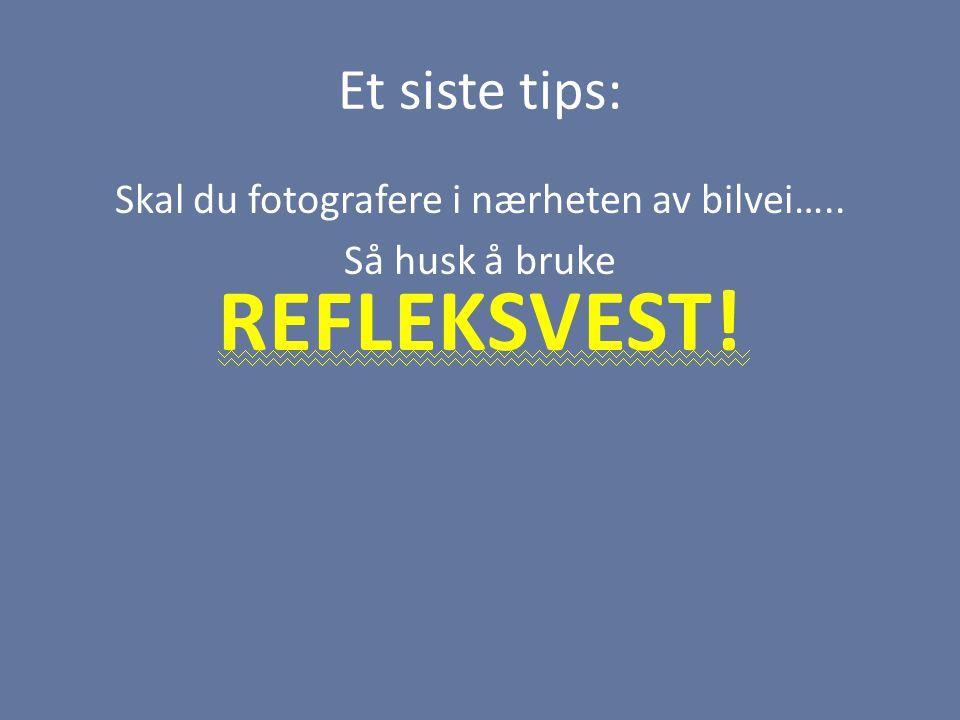 Et siste tips: Skal du fotografere i nærheten av bilvei….. Så husk å bruke REFLEKSVEST!