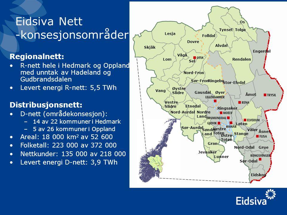 Anlegg •Regionalnett –1.660 km linjer og kabler –Spenningsnivåer: 66 og 132 kV –Kabelandel: 3,3 % –Transformatorstasjoner: 75 –Hovedtransformatorer: 107 –Transformatorytelse: 2765 MVA •Distribusjonsnett –18.500 km linjer og kabler –Spenningsnivåer HS: 5, 11 og 22 kV –Spenningsnivåer LS: 230 og 400 V –Kabelandel: 31,2 % –Nettstasjoner: ca.