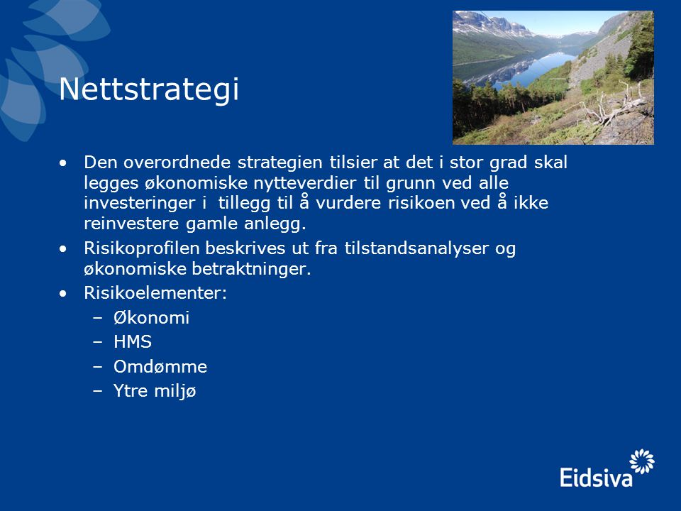 Nettstrategi •Den overordnede strategien tilsier at det i stor grad skal legges økonomiske nytteverdier til grunn ved alle investeringer i tillegg til