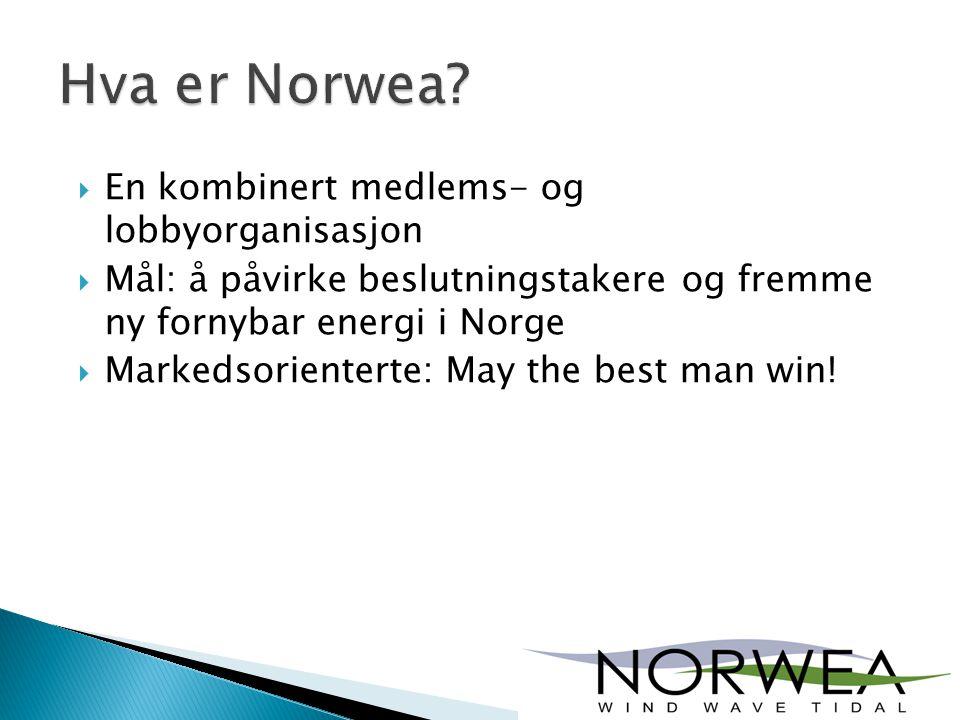  En kombinert medlems- og lobbyorganisasjon  Mål: å påvirke beslutningstakere og fremme ny fornybar energi i Norge  Markedsorienterte: May the best man win!