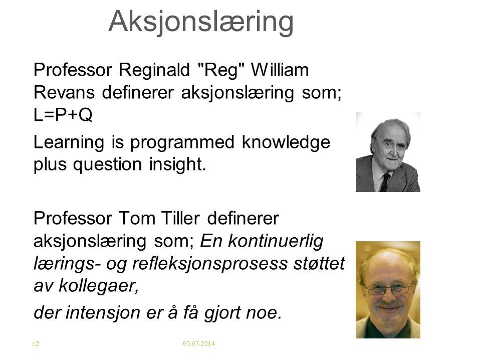 Aksjonslæring Professor Reginald