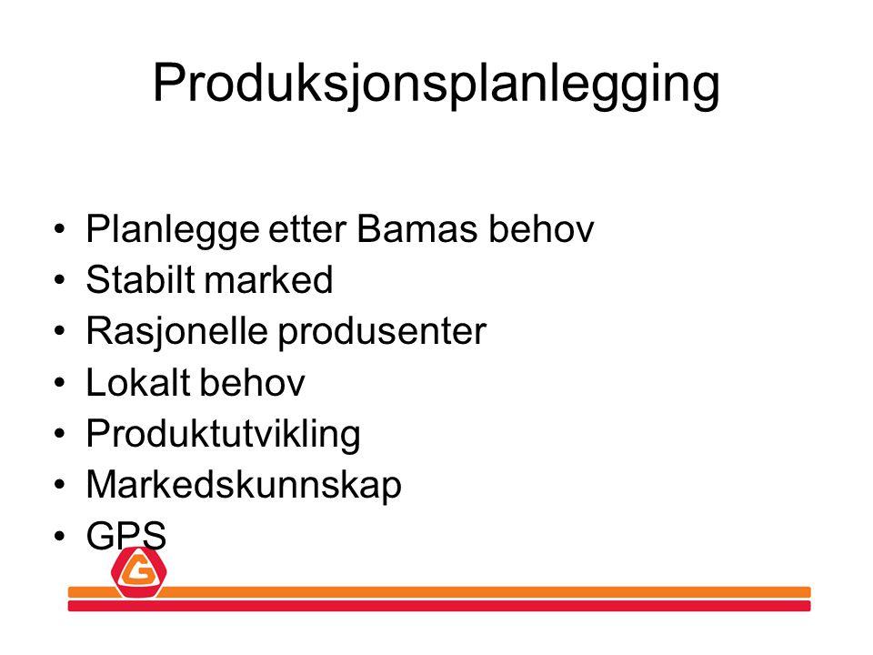 Produksjonsplanlegging •Planlegge etter Bamas behov •Stabilt marked •Rasjonelle produsenter •Lokalt behov •Produktutvikling •Markedskunnskap •GPS