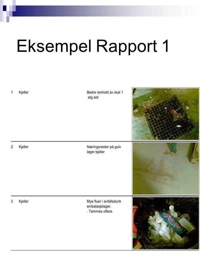 Eksempel Rapport 1