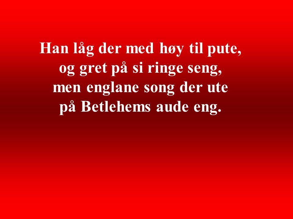 Han låg der med høy til pute, og gret på si ringe seng, men englane song der ute på Betlehems aude eng.