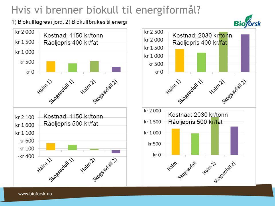 Hvis vi brenner biokull til energiformål.1) Biokull lagres i jord.