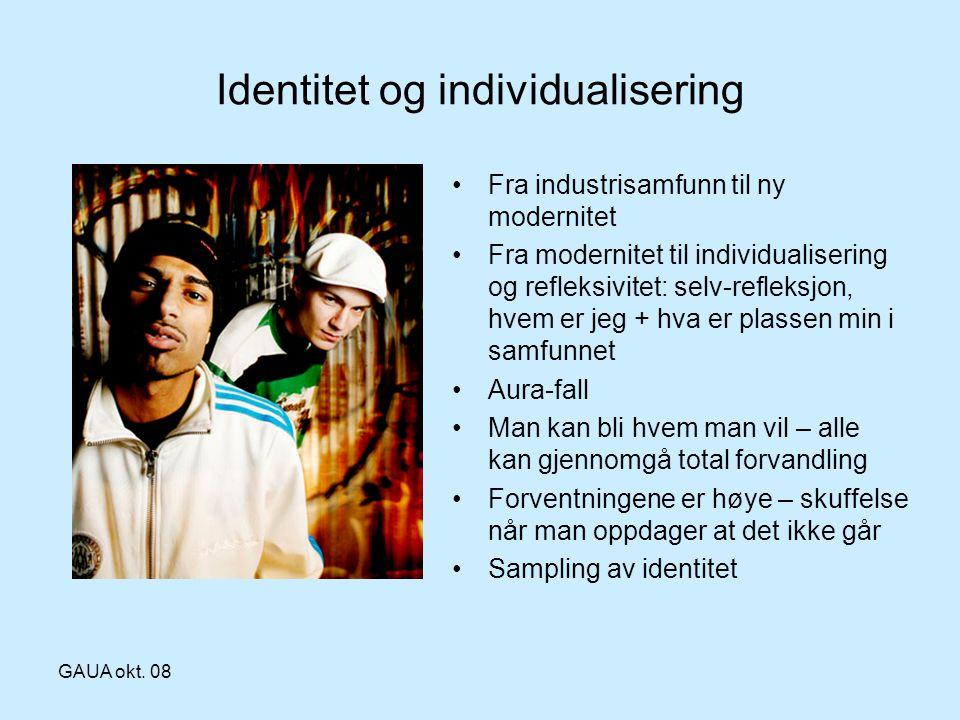 GAUA okt. 08 Identitet og individualisering •Fra industrisamfunn til ny modernitet •Fra modernitet til individualisering og refleksivitet: selv-reflek