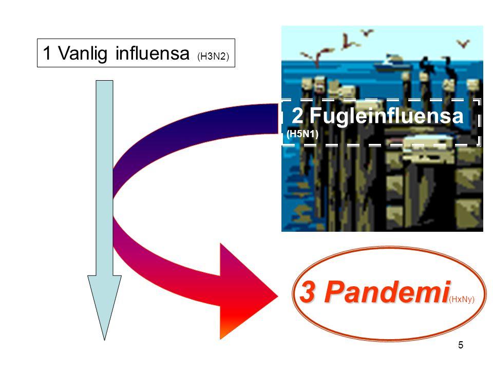 5 2 Fugleinfluensa (H5N1) 3 Pandemi 3 Pandemi (HxNy) 1 Vanlig influensa (H3N2)