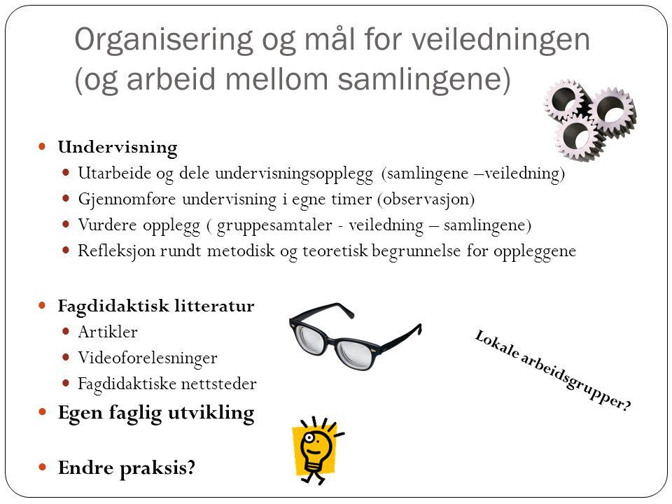 Organisering og mål for veiledningen (og arbeid mellom samlingene)  Undervisning  Utarbeide og dele undervisningsopplegg (samlingene –veiledning) 