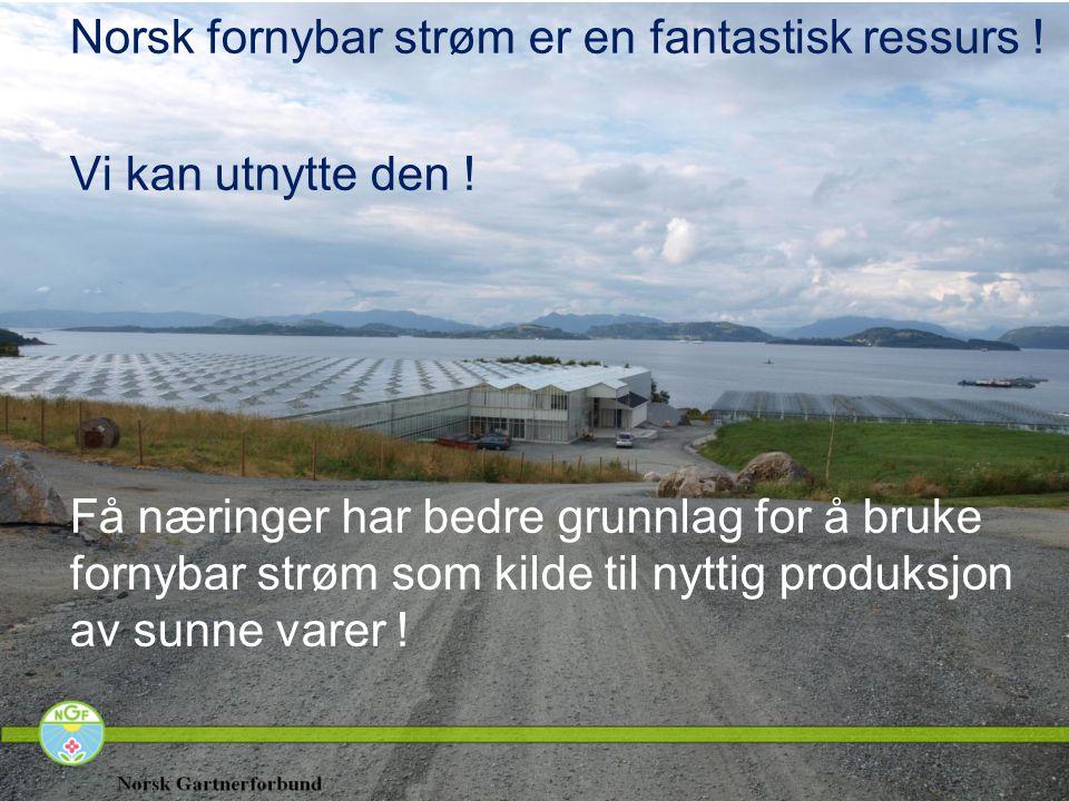 Norsk fornybar strøm er en fantastisk ressurs ! Vi kan utnytte den ! Få næringer har bedre grunnlag for å bruke fornybar strøm som kilde til nyttig pr